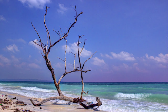 Top Beaches in Havelock Island, Andamans