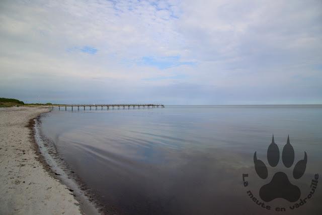 Suede-Scanie-Falsterbo-plage