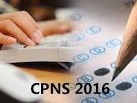 Ini Bidang yang Bakal Dibuka untuk Seleksi CPNS 2016