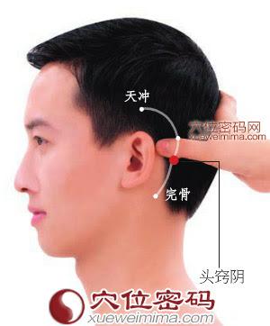 頭竅陰穴位 | 頭竅陰穴痛位置 - 穴道按摩經絡圖解 | Source:xueweitu.iiyun.com