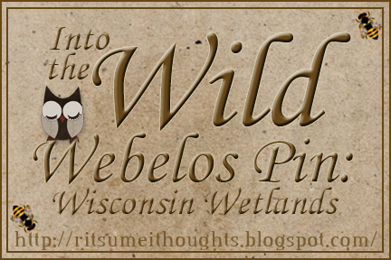 Materials for the Webelos Into the Wild pin, requirement 8, focusing on Wisconsin and the Midwest.