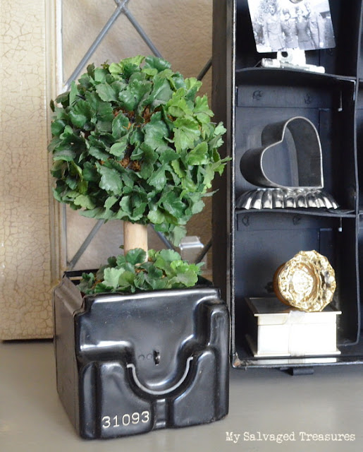 turn an old pay phone coin box into a plant holder