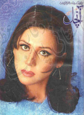 Free download Aanchal Digest February 2007 pdf, Online Reading