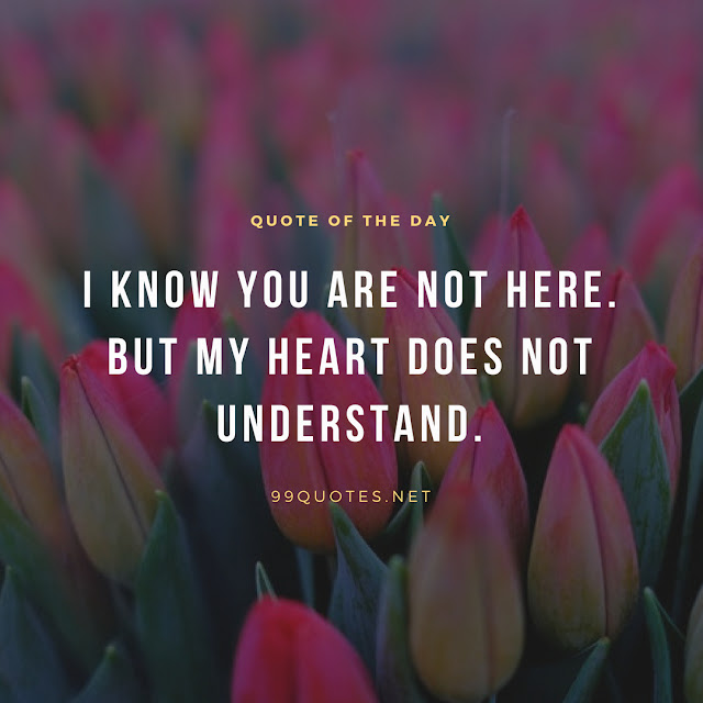 I know you are not here. But my heart does not understand.