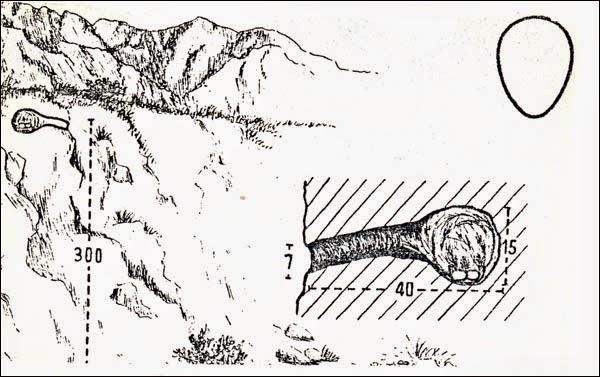 Cordilleran Canastero