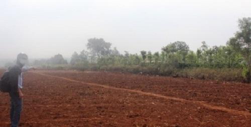 Gia Lai: 10 cán bộ chiếm dụng 31,5 ha rừng