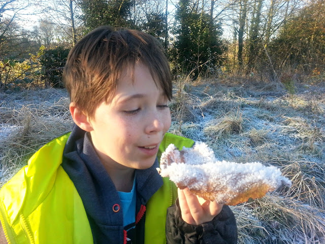Boy holding huge leaf covered in thick frost.