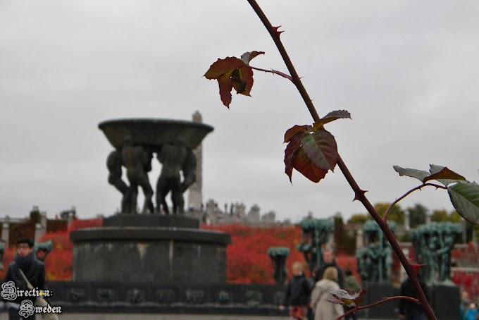 Jesienny Park Vigelanda