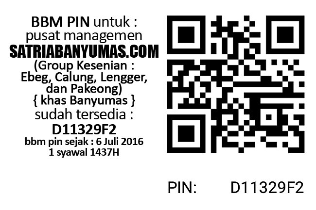 PIN BBM Satria Banyumas : D11329F2