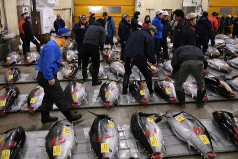 Ratusan Pengunjuk Rasa Menolak Pasar Ikan Tsukiji Dipindah ke Toyosu