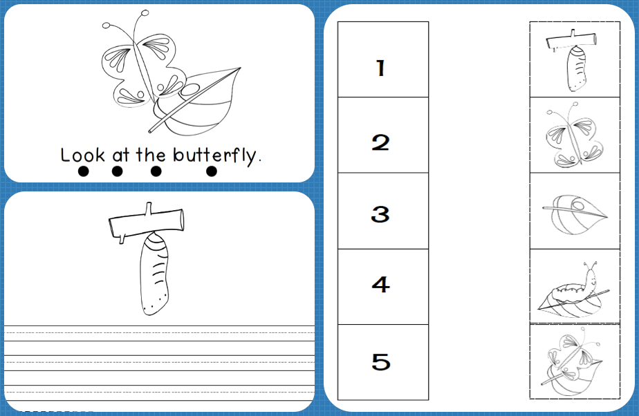 Life cycle of the butterfly, emergent reader, sequence activity