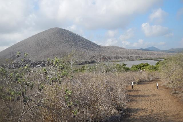 Floreana hills