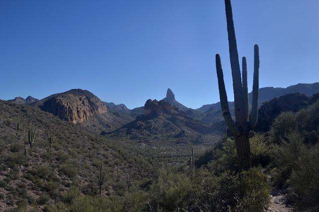Black Top Mesa and Palomino Mountain