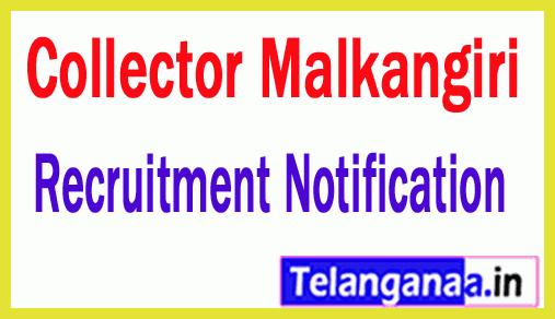 Collectorate Malkangiri Government of Odisha Recruitment Notification