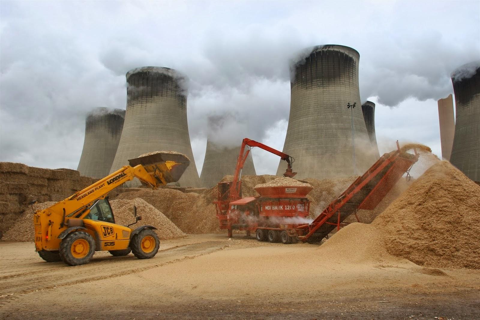Optimization of Biomass-Coal Cofiring in Coal Fired Powerplant