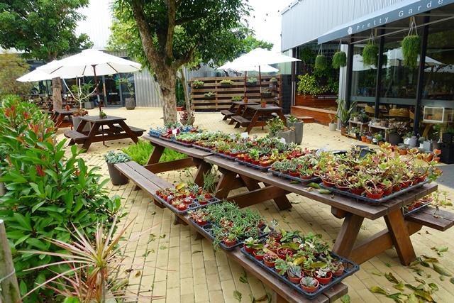 樂農匯~桃園親子餐廳、多肉庭園、兒童沙坑、家庭蔬食Cafe