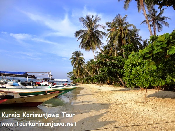 Keunggulan Wisata Pantai Karimunjawa Paket Tour Karimunjawa