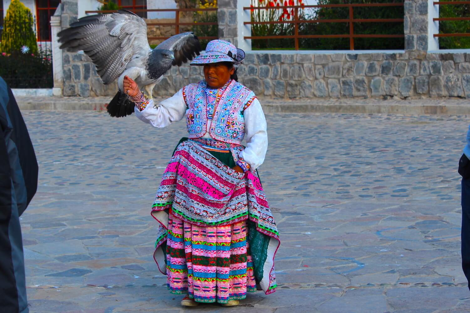 native woman with hawk colca canyon