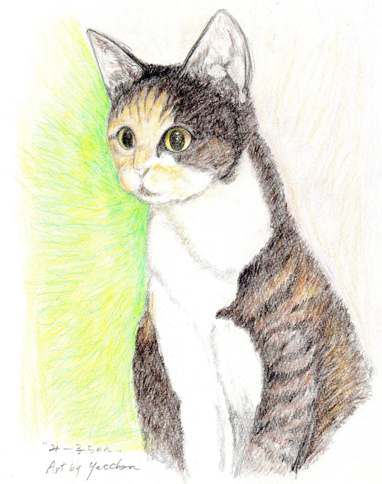 やっちゃんのネコと動物イラスト: 2017