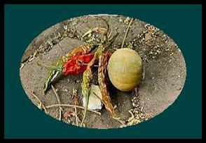 रास्ते में पड़े हुए नींबु-मिर्च पर पैर क्यों नहीं रखना चाहिए? Raste me pade nimbu mirch par pair rakhna nahi chahiye, aisa kyo?