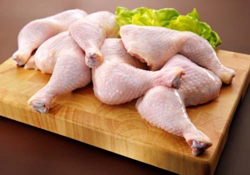 Bisnis ayam potong