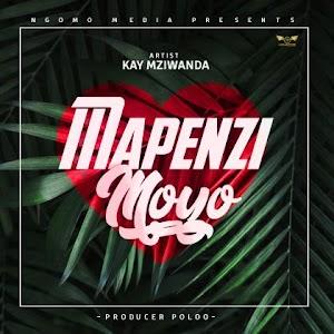Download Audio | Kay Mziwanda - Mapenzi Moyo (Singeli)