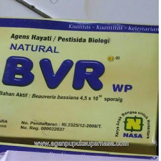 pengadaan pestisida organik BVR Nasa