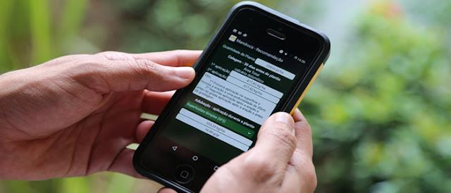 Aplicativo usa mineração de dados para plantio eficiente no amazonas.