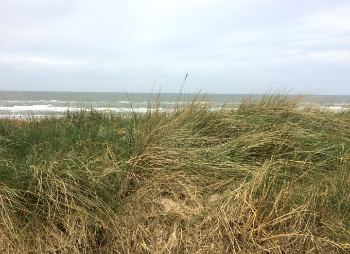 View at the Northern Sea on a stormy day in Egmond aan Zee, Noordholland