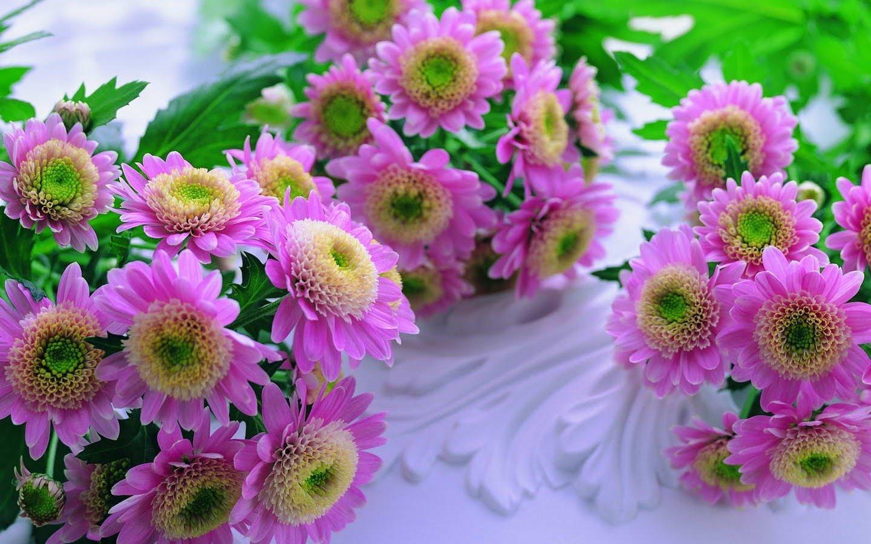 Flowers - st-hallvardmenighet