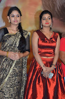 Pichuva Kaththi Tamil Movie Audio Launch Stills  0043.jpg