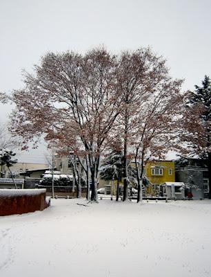 街の冬景色
