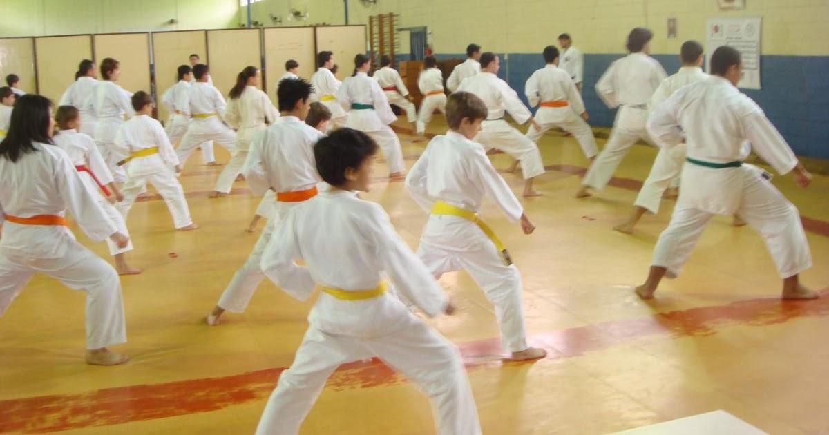 Resultado de imagem para Karatê Amigos da Escola Norte-Rio-grandense (Fekaen)