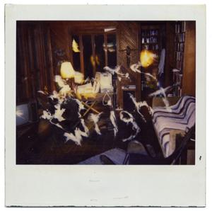 Polaroid Ghost Photos