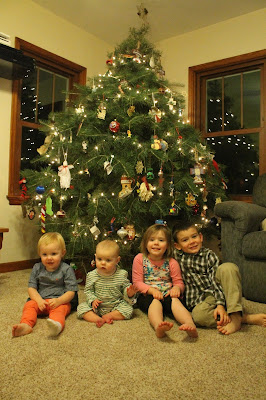 Christmas Time is Harvest Time for Christmas Tree Farmers: Selecting a Real Christmas Tree is a tradition for families