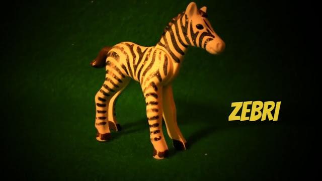 Zebri das Zebra. Einer der Hauptdarsteller