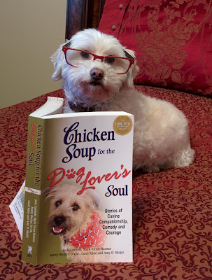 One of my favorite dog books, full of great stories & quotes
