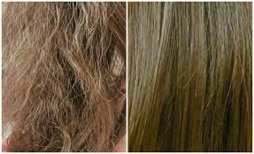 وصفه طبيعيه لزياده طول وكثافه ونعومه شعرك