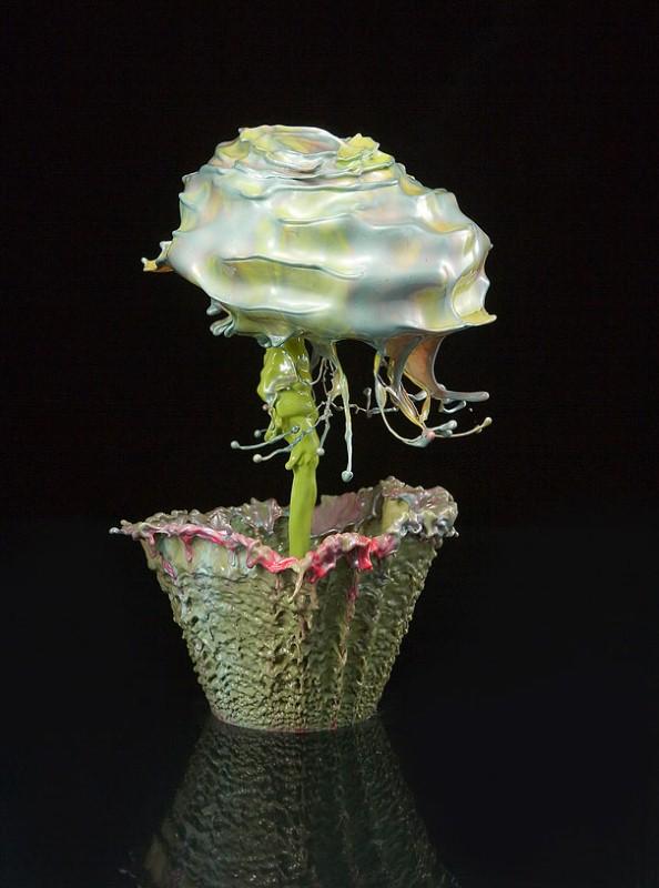 Жидкие цветы. Jack Long 17
