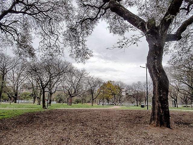 Parque Las Heras,sus árboles y el cielo con nubes.