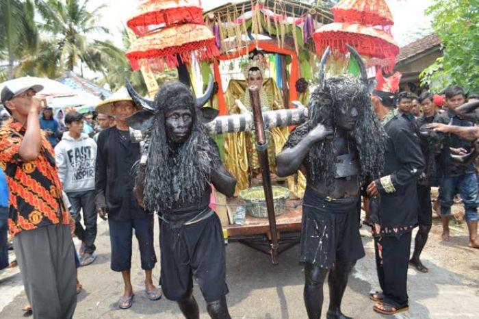Ritual Kebon-Keboan Alasmalang Sambut Suro, Budaya Tahunan Di Banyuwangi
