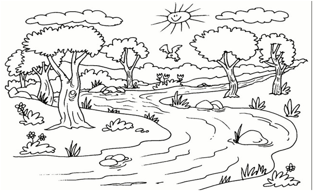 CLASES DE CIENCIAS NATURALES CON METODOLOGIA MAPA CONCEPTUAL