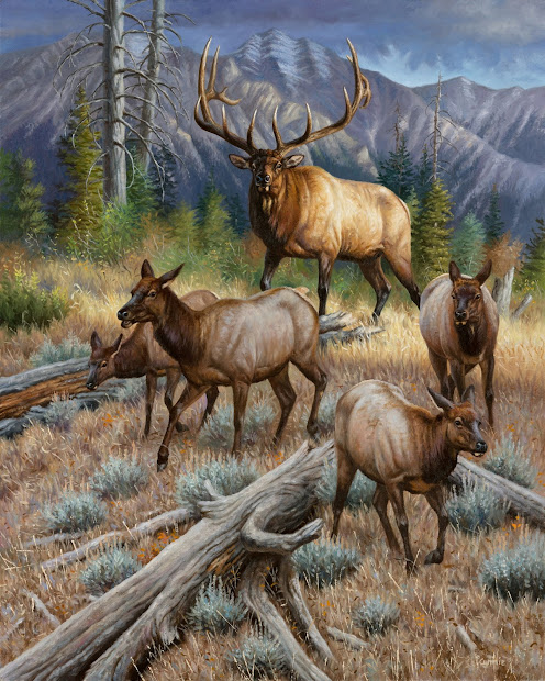 Elk Tracks Rmef Recognizes 2014 Premiere Art Program Artists