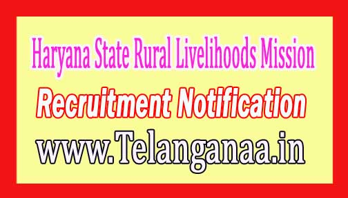 Haryana State Rural Livelihoods Mission HSRLM Recruitment Notification 2017
