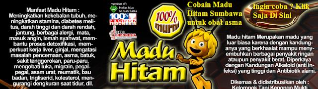 http://caramenyembuhkanasmasecaratotal.blogspot.co.id/madu-hitam-sumbawa-untuk-mengobati.html