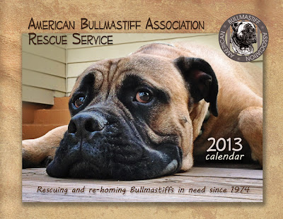 2013 American Bullmastiff Association Rescue Service calendar