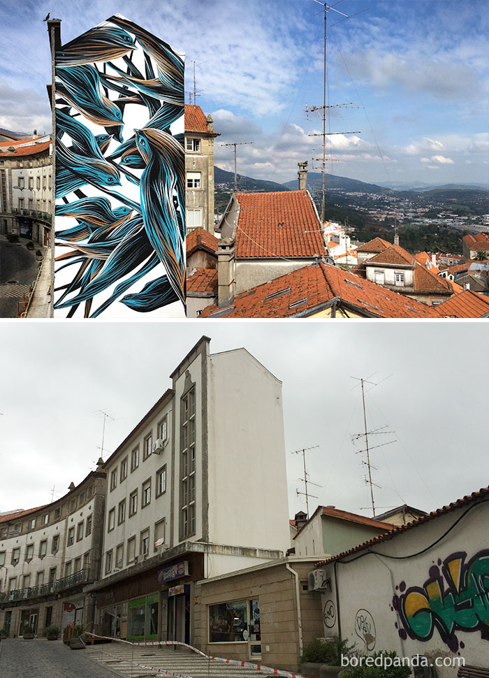10+ Incredible Before & After Street Art Transformations That'll Make You Say Wow - Bird Mural In Covilha, Portugal