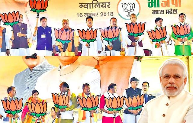 PM नरेंद्र मोदी ने 20 उम्मीदवारों के लिए रैली की थी, 19 हार गए | MP NEWS