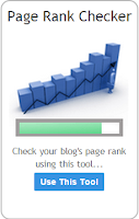 Page rank checker