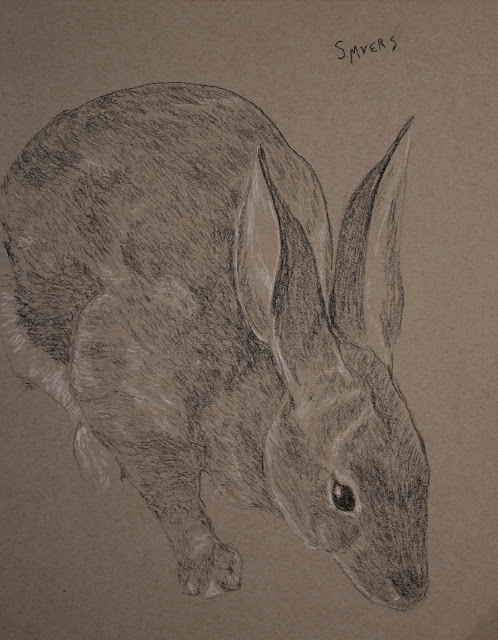 rabbit, bunny, art, arte, drawing, sarah, myers, artist, dessin, dibujo, charcoal, conte, grayscale, animal, creature, artwork, detail, pencil, lines, classic, classical, figurative